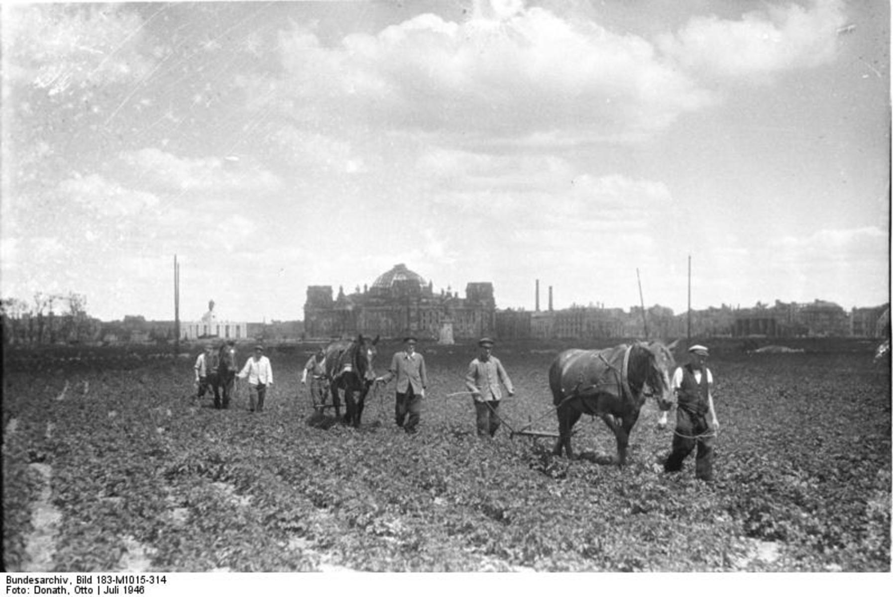 Bundesarchiv_Bild_183-M1015-314,_Berlin,_baumloser_Tiergarten.jpg