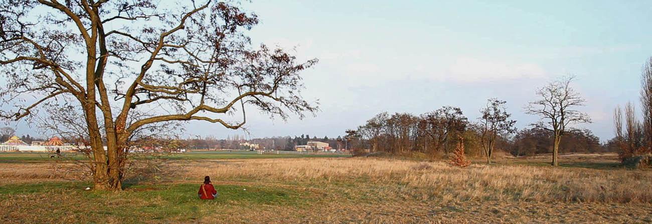 Ode an das Tempelhofer Feld