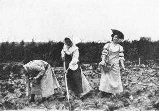 Gartenbauschule Marienfelde: Düngen des Kohlfeldes